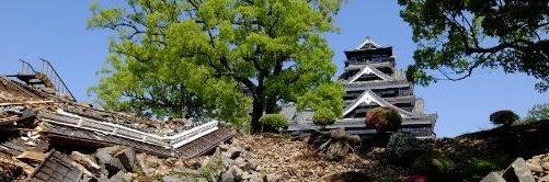 熊本市内等の都市公園利用実態調査 写真